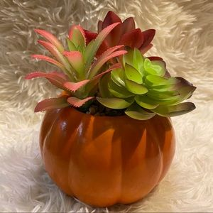 Artificial Halloween succulent plant pumpkin